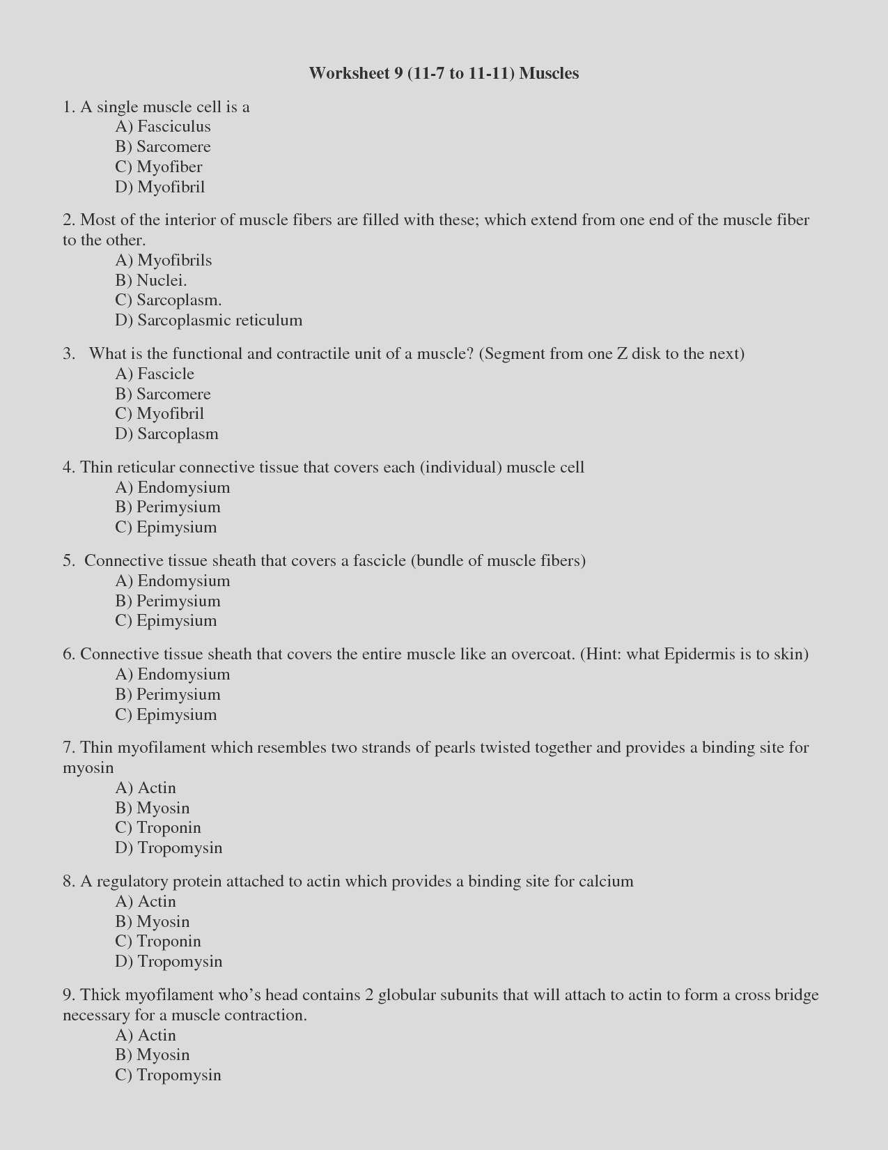 post muscle contraction worksheet