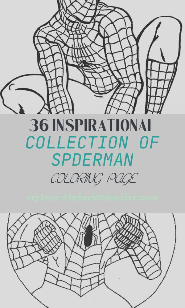 Spderman Coloring Page New Print & Download Spiderman Coloring Pages An Enjoyable