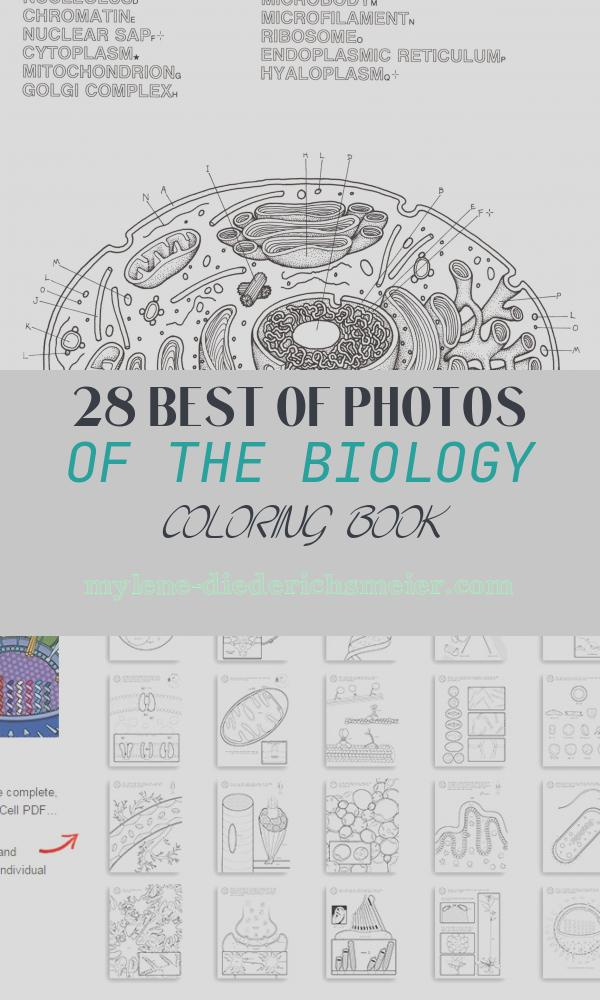 The Biology Coloring Book Beautiful Biology Coloring Pages Biology Coloring Book 2280