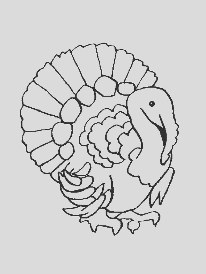 free animals turkey coloring pages for preschool