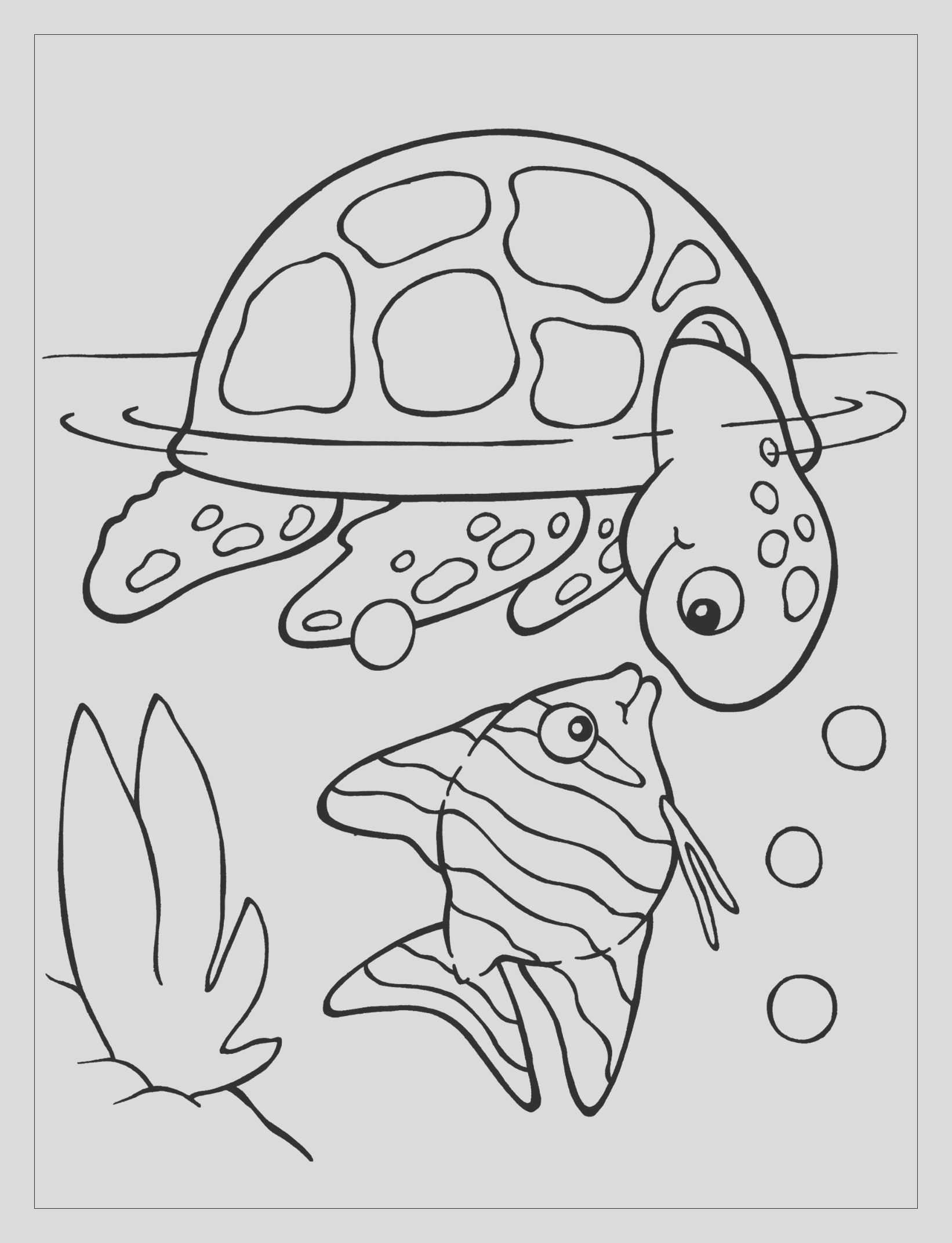 image=turtles coloring pages for children turtles 1