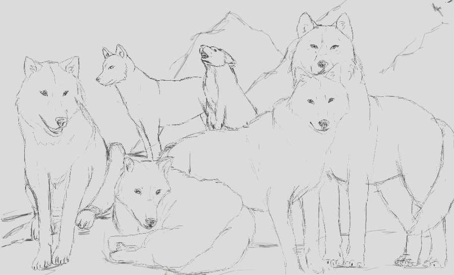 Wolf pack line art usable