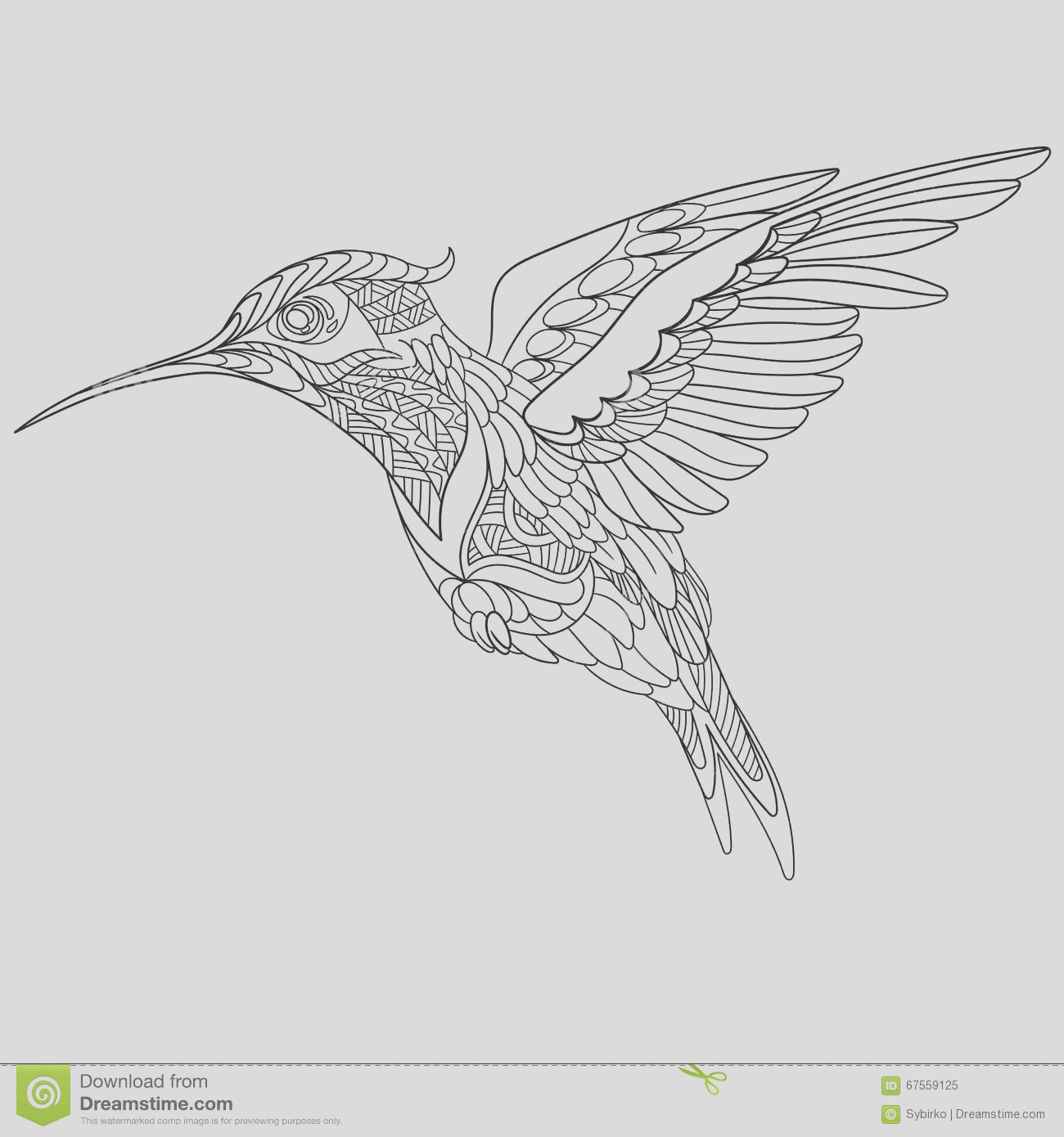 stock illustration zentangle stylized hummingbird cartoon white background sketch adult antistress coloring page hand drawn doodle image