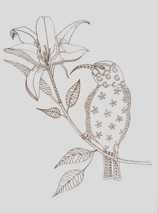 Hummingbird on Flower Adult Coloring Page