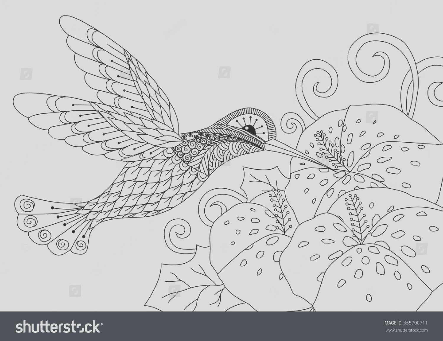 stock vector zentangle humming bird design for coloring book for adult