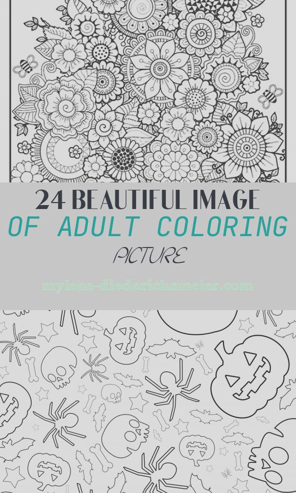 Adult Coloring Picture Lovely Seasons Adult Coloring Book with Color Pencils Color