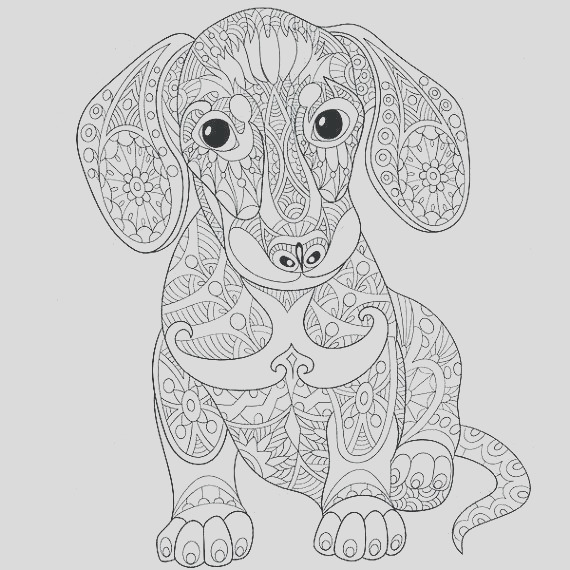 animal coloring pages adult