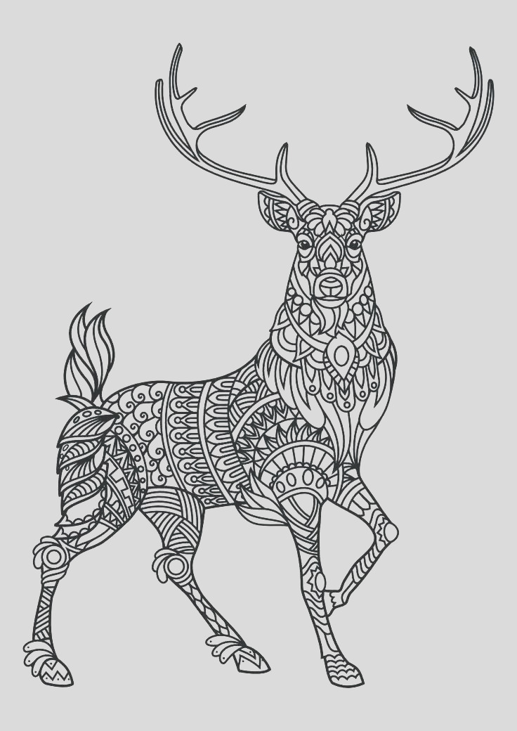 hard cute coloring pages of animals