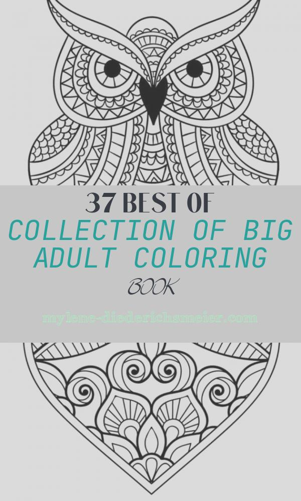 Big Adult Coloring Book Lovely Americana S Shop Vintage Coloring Books and More