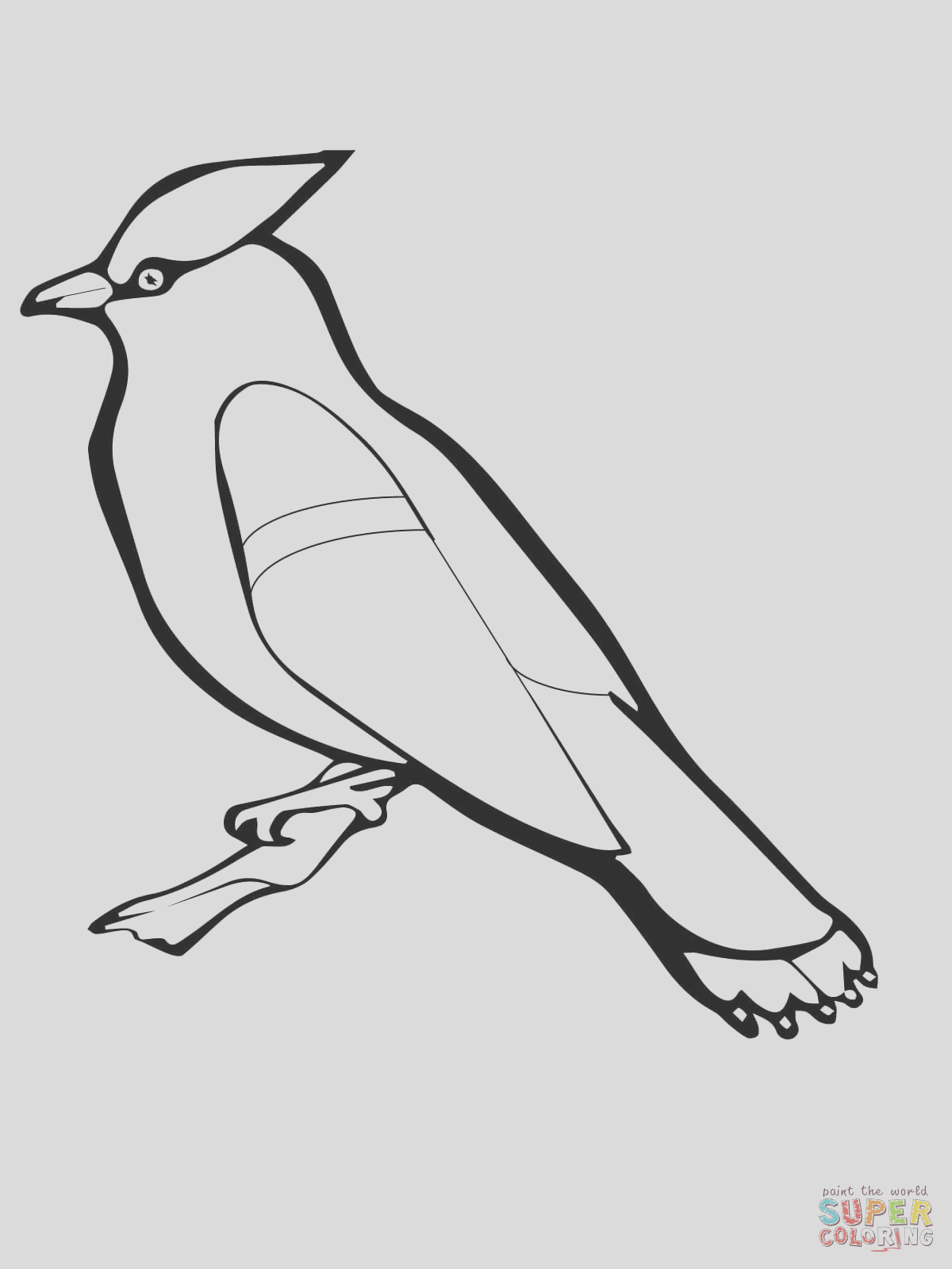 canimals printable coloring pages sketch templates