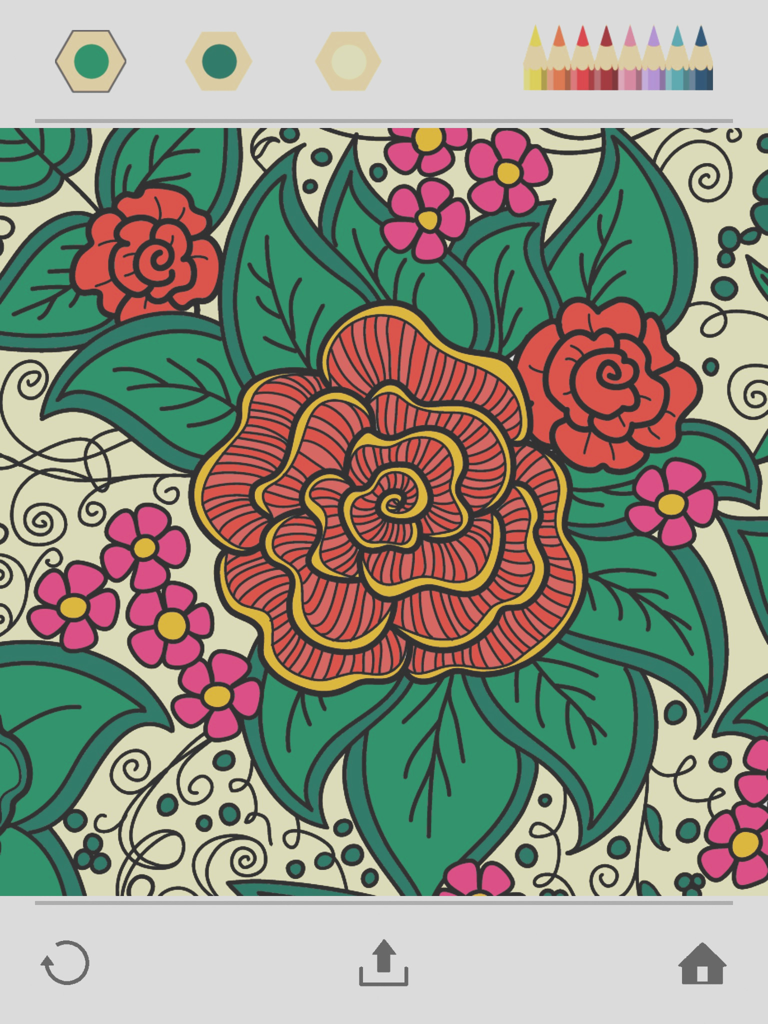 9505 colorfy coloring book for adults free