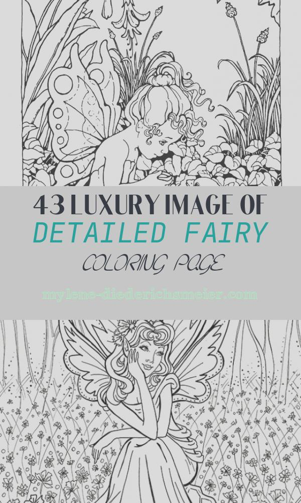Detailed Fairy Coloring Page Inspirational 1000 Images About Adult Coloring Pages On Pinterest