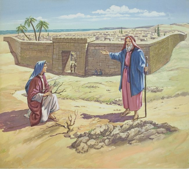 reflection elijah and widow of