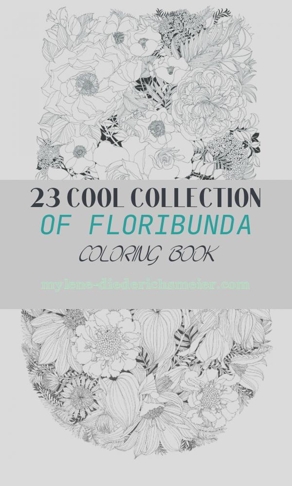 Floribunda Coloring Book Lovely Floribunda Books