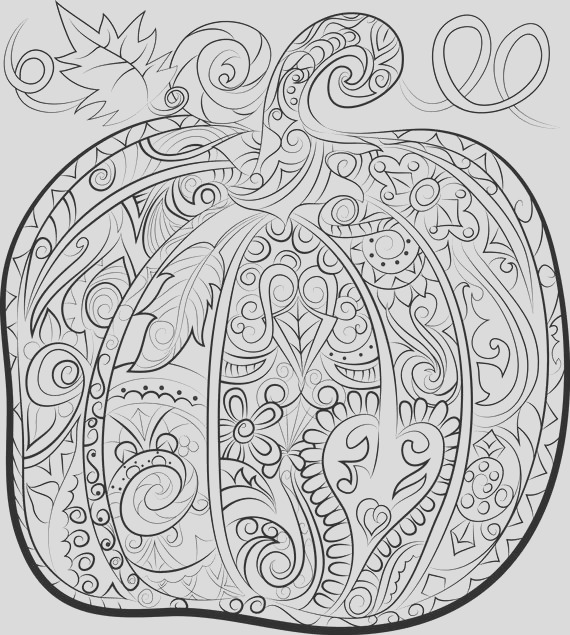 pumpkin adult colouring page halloween