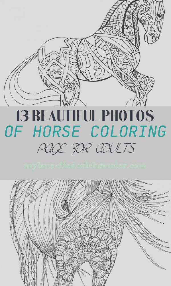Horse Coloring Page for Adults Awesome Free Printable Adult Coloring Pages