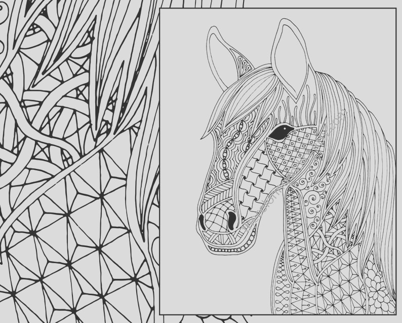 horse coloring page animal coloring page