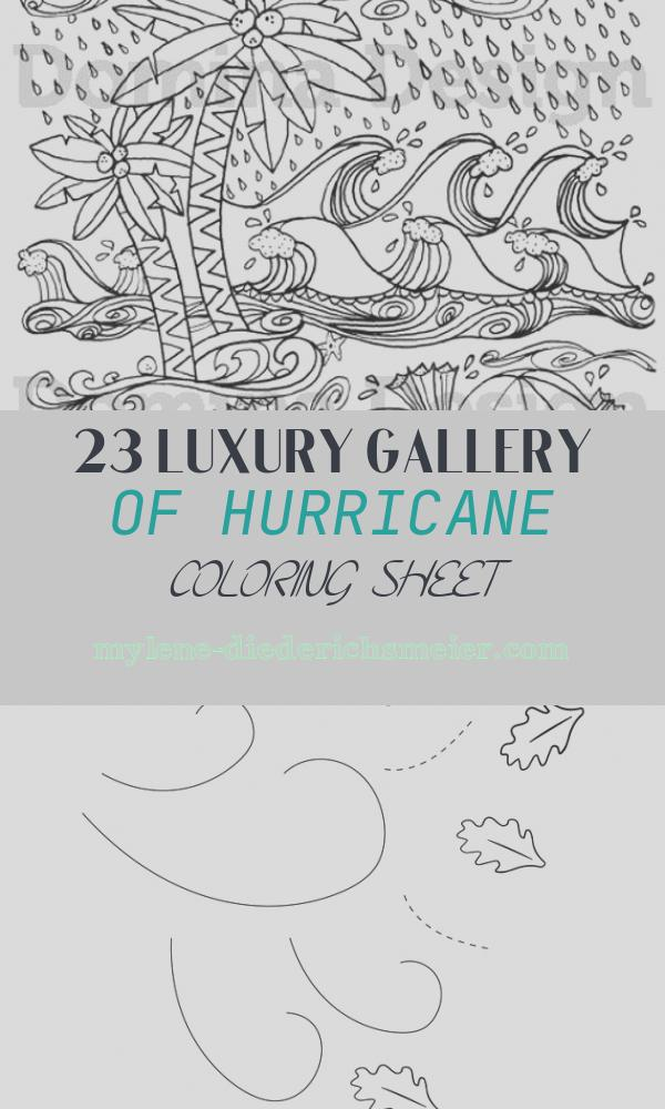 Hurricane Coloring Sheet Awesome Adult Coloring Page Hurricane at the Beach Digital