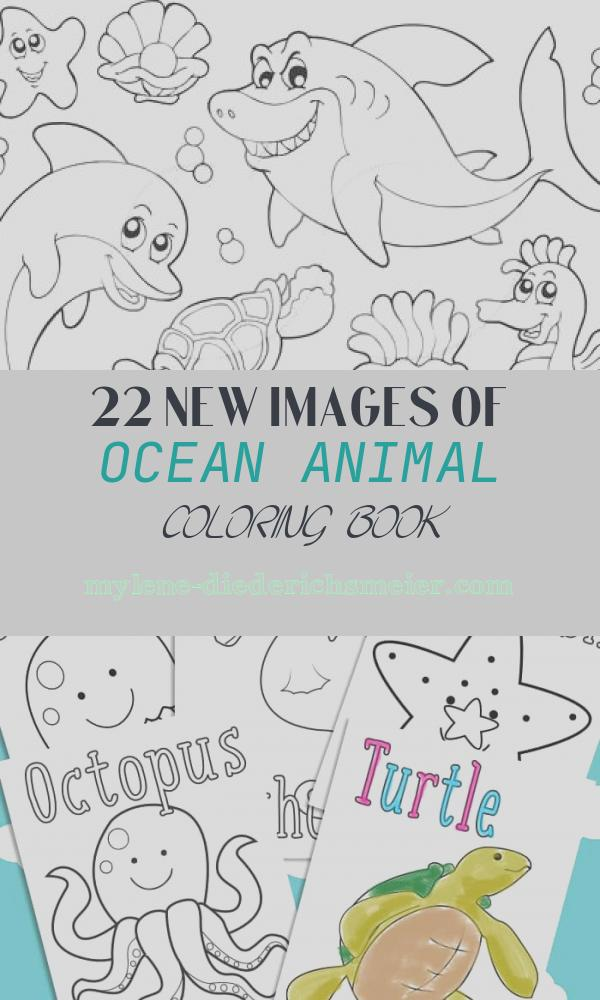 Ocean Animal Coloring Book Elegant Coloring Coloring Pages and Seals On Pinterest