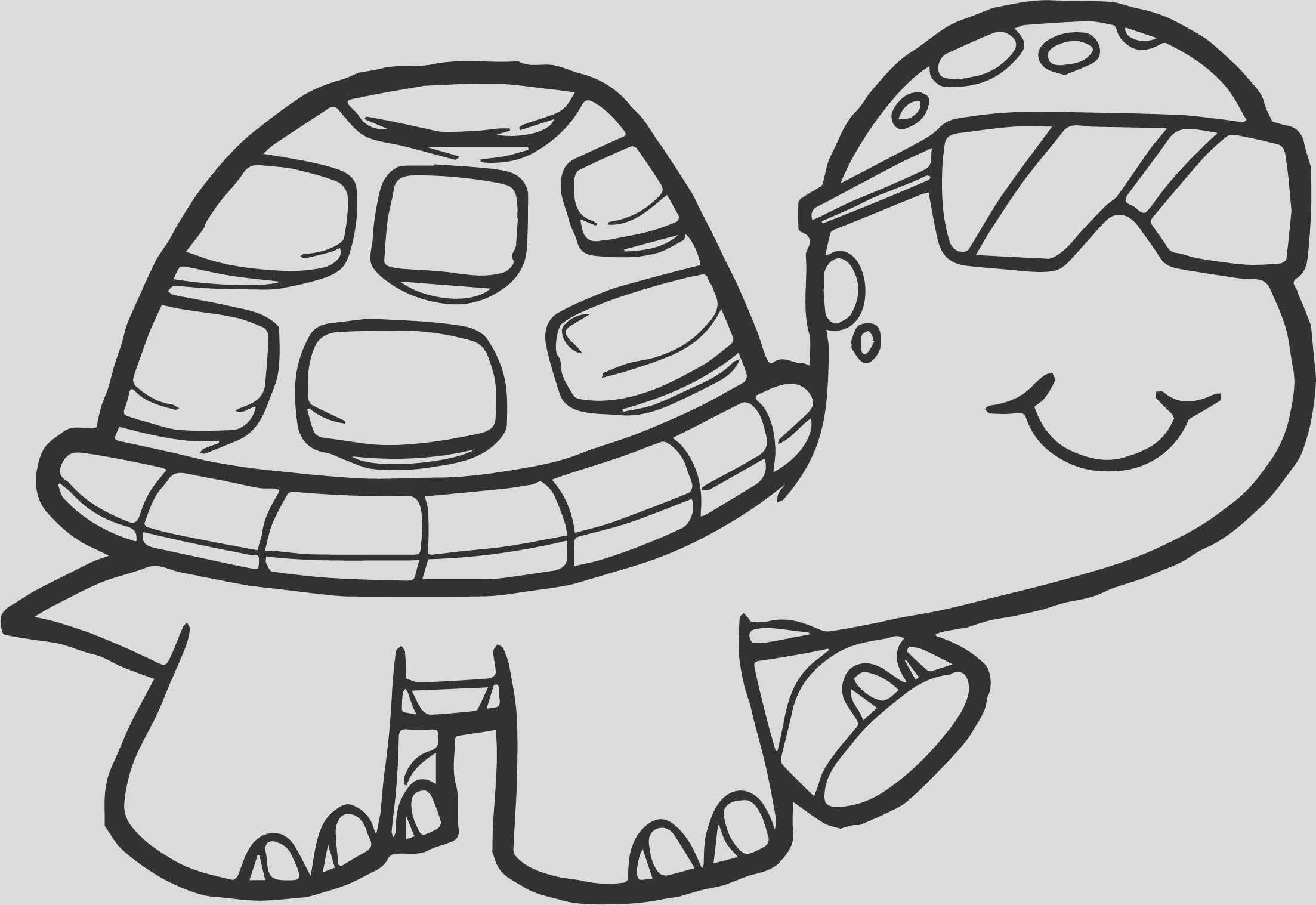 detailed turtle coloring pages