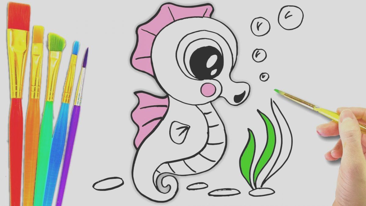 Animals for Coloring Beautiful Sea Animals Coloring Page L Aquarium Animals Drawing Pages
