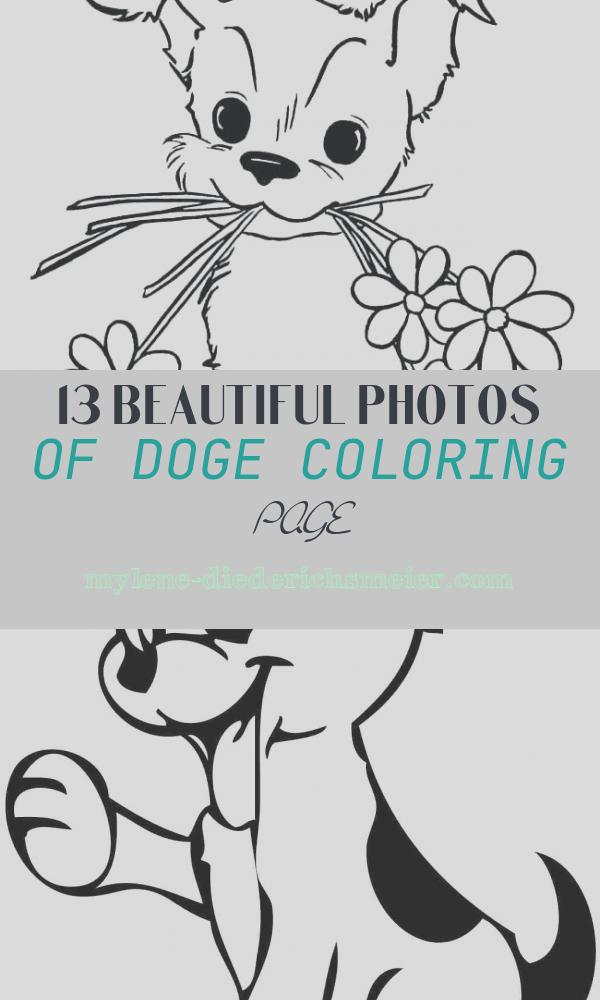 Doge Coloring Page Fresh Baby Animal Coloring Pages