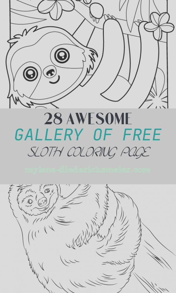 Free Sloth Coloring Page Luxury Sloth Coloring Page Coloring Pages for Kids