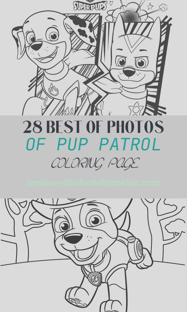 Pup Patrol Coloring Page Best Of Free Paw Patrol Coloring Pages Happiness is Homemade