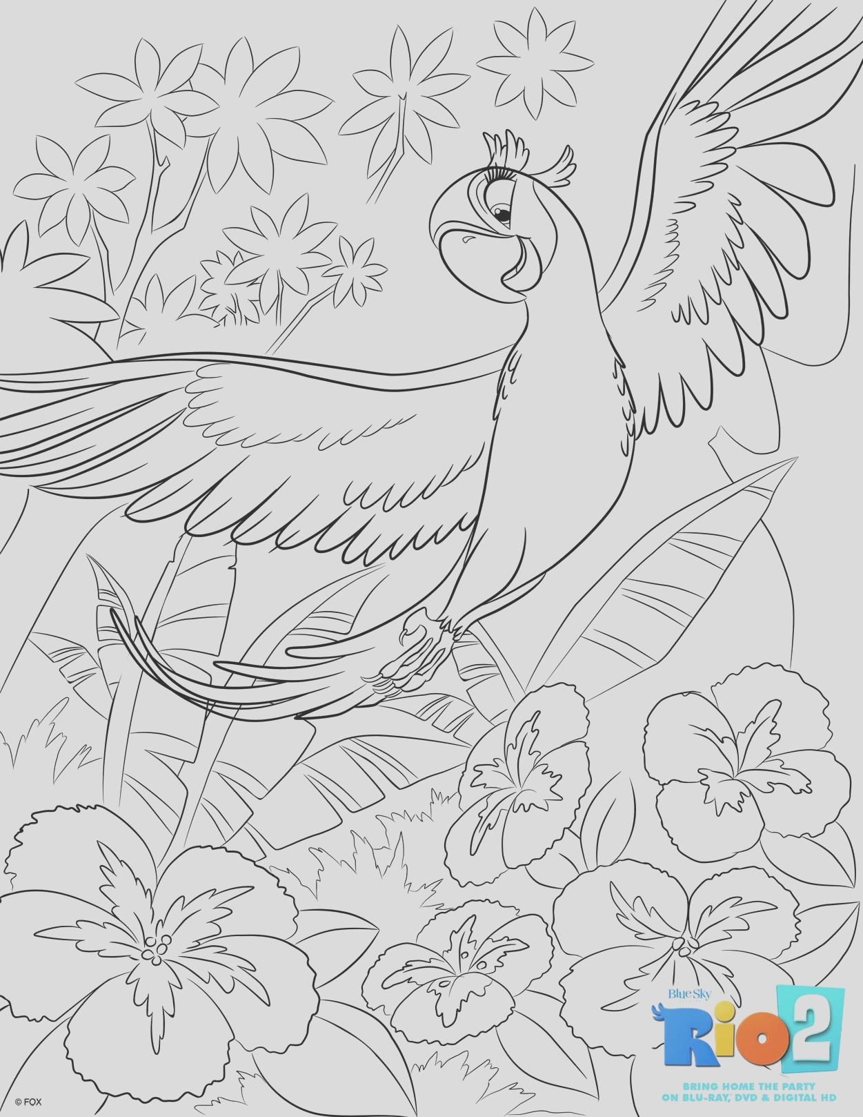 rio 2 activity sheets rio2insiders