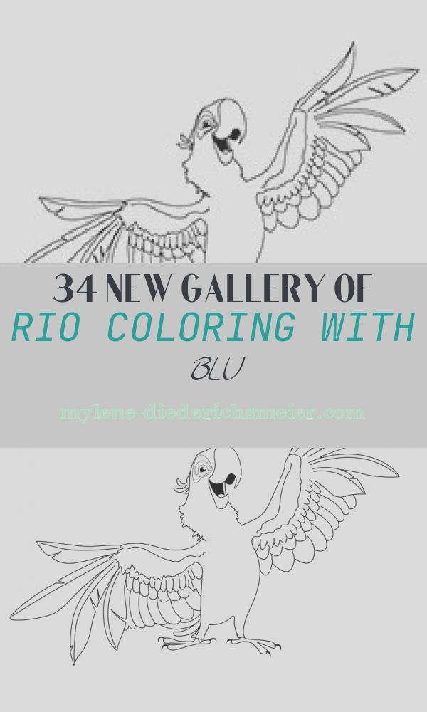 Rio Coloring with Blu Lovely top 15 Rio Movie Coloring Pages for Your Little Es