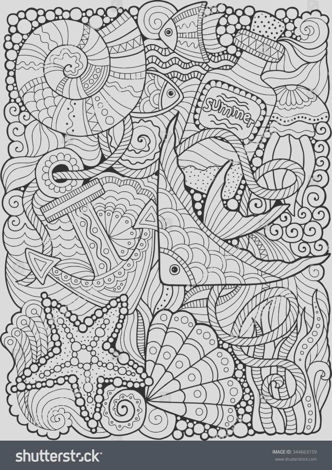 vector coloring book adult summers sea
