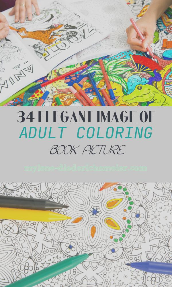 Adult Coloring Book Picture Inspirational Adult Colouring In Books the Latest Weapon Against Stress