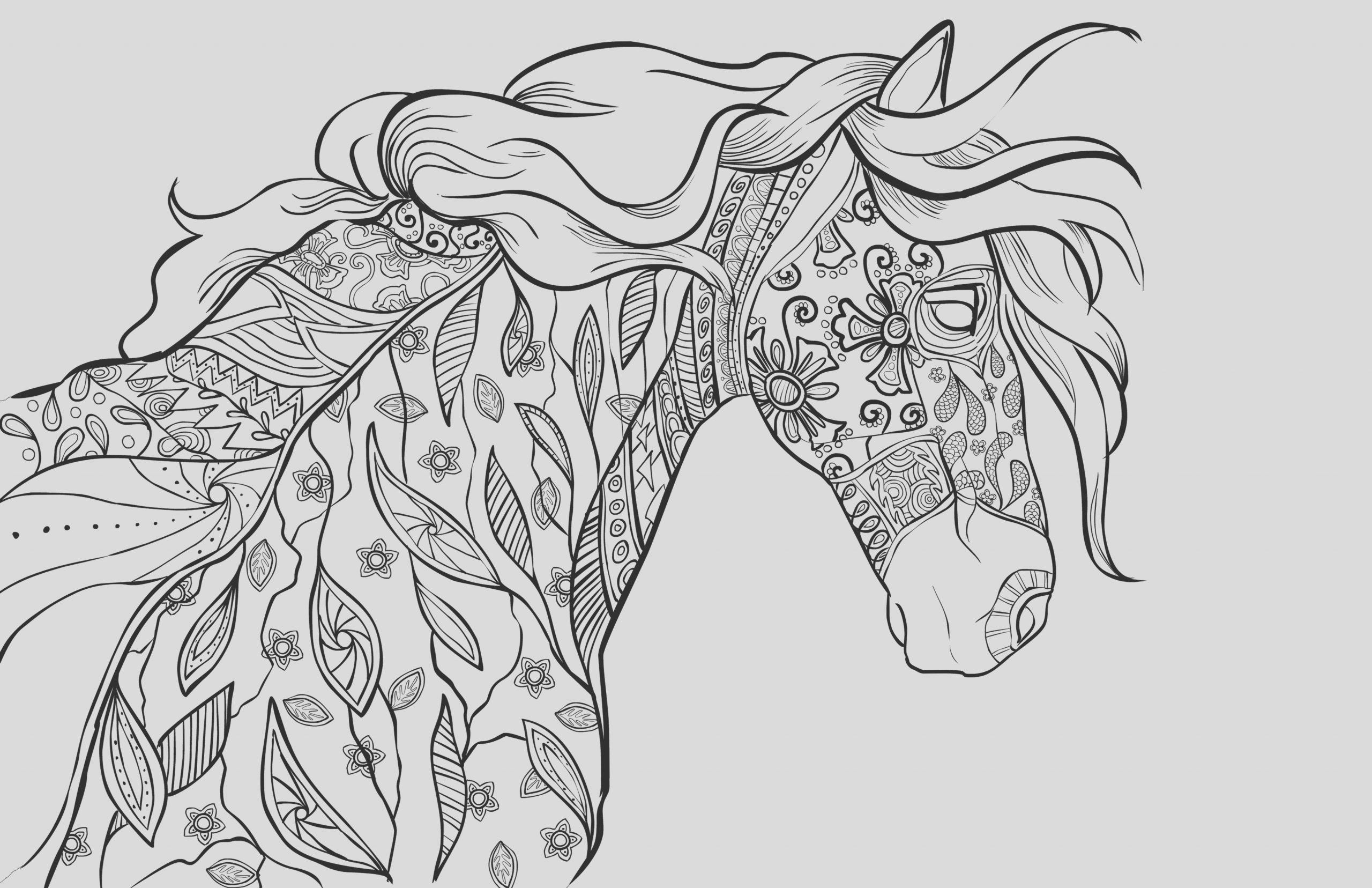 adult coloring book page coloring for grownups