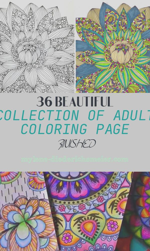 Adult Coloring Page Finished Luxury Lisa Liza Lou Use Your Finished Coloring Page to Make