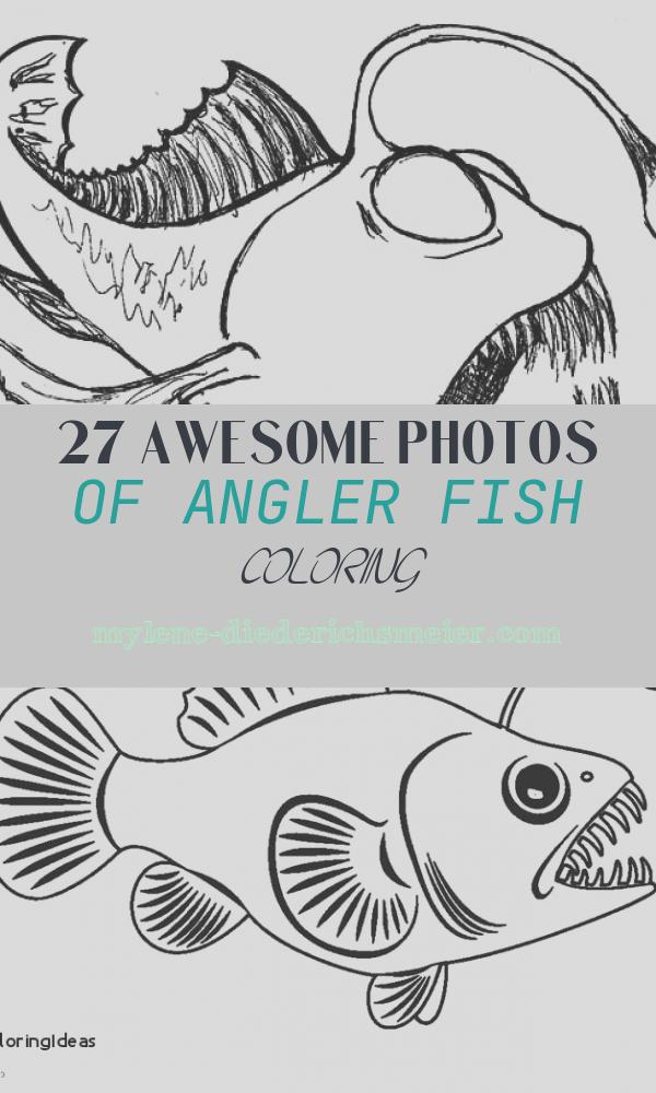 Angler Fish Coloring Elegant Sketch Angler Fish Coloring Pages Best Place to Color