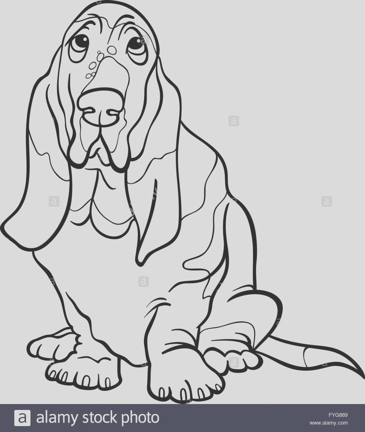 stock photo basset hound dog cartoon for coloring book