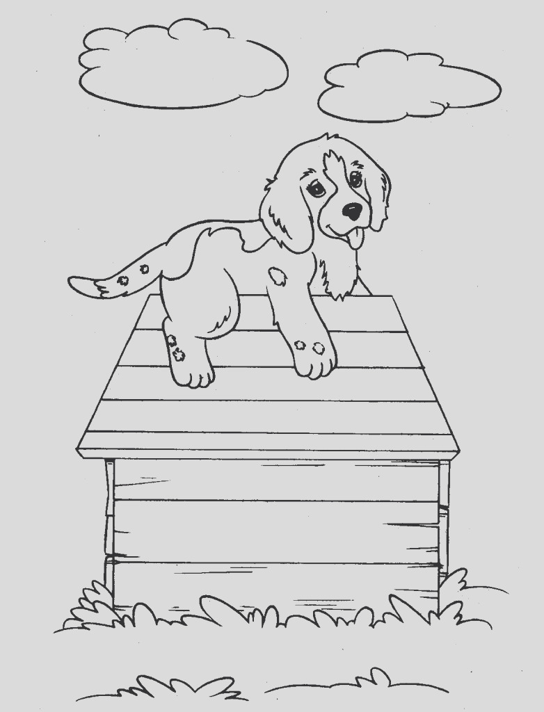 bassett hound coloring pages