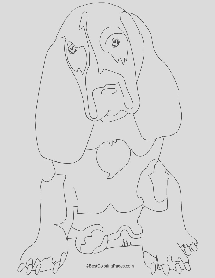 basset hound coloring page 1d3356