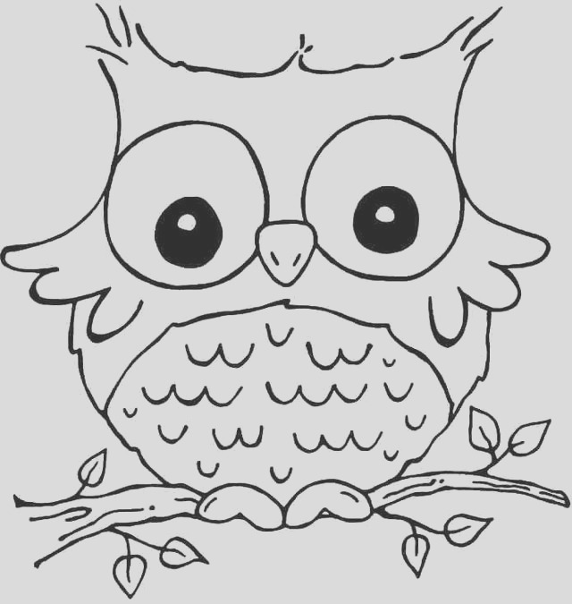 cute animals with big eyes coloring pages