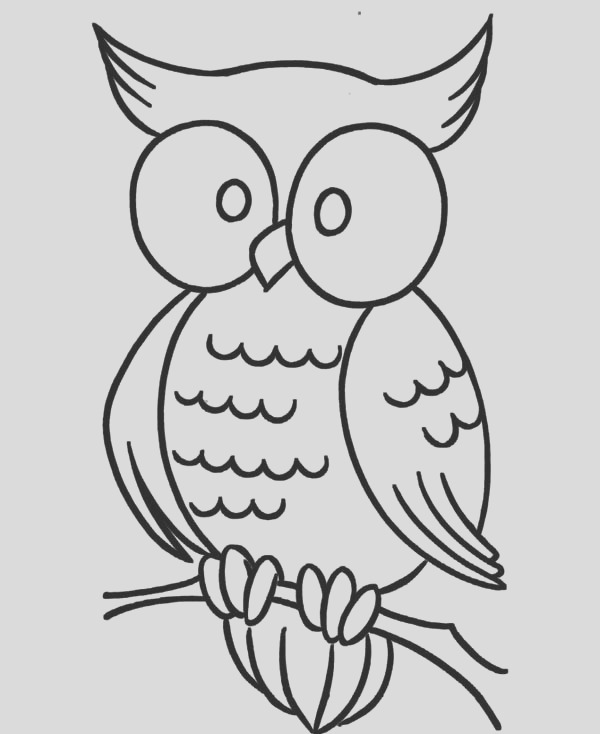 large eye owl coloring page