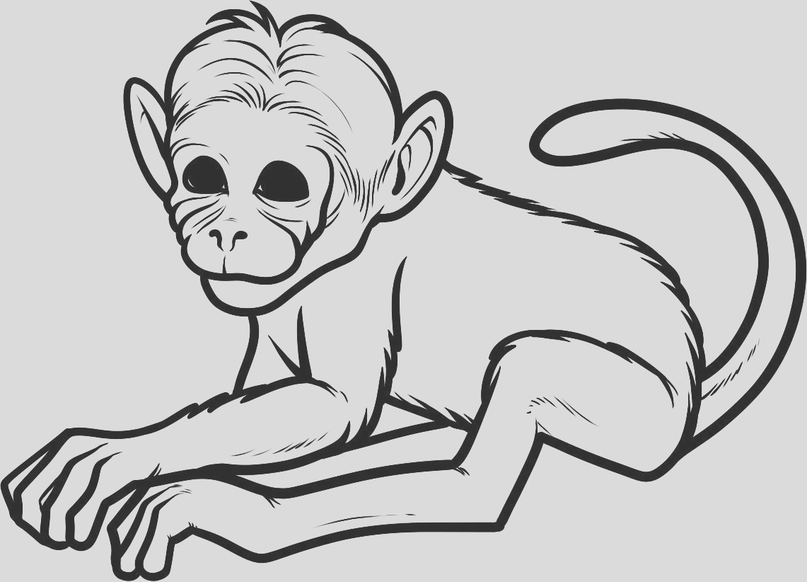 cartoon pictures of monkeys for kids