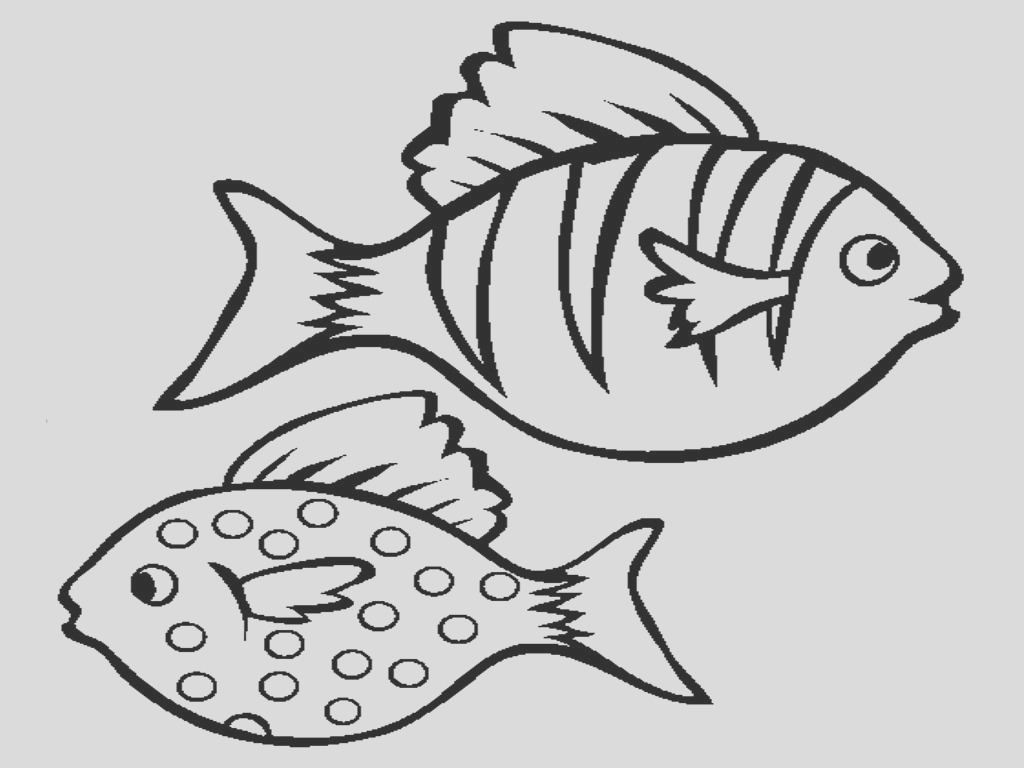 cute fish outline