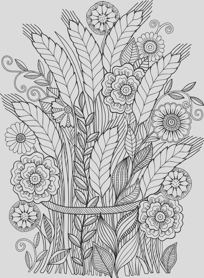 stock illustration black white summer flowers isolated white abstract doodle background made flowers butterfly vector coloring page image