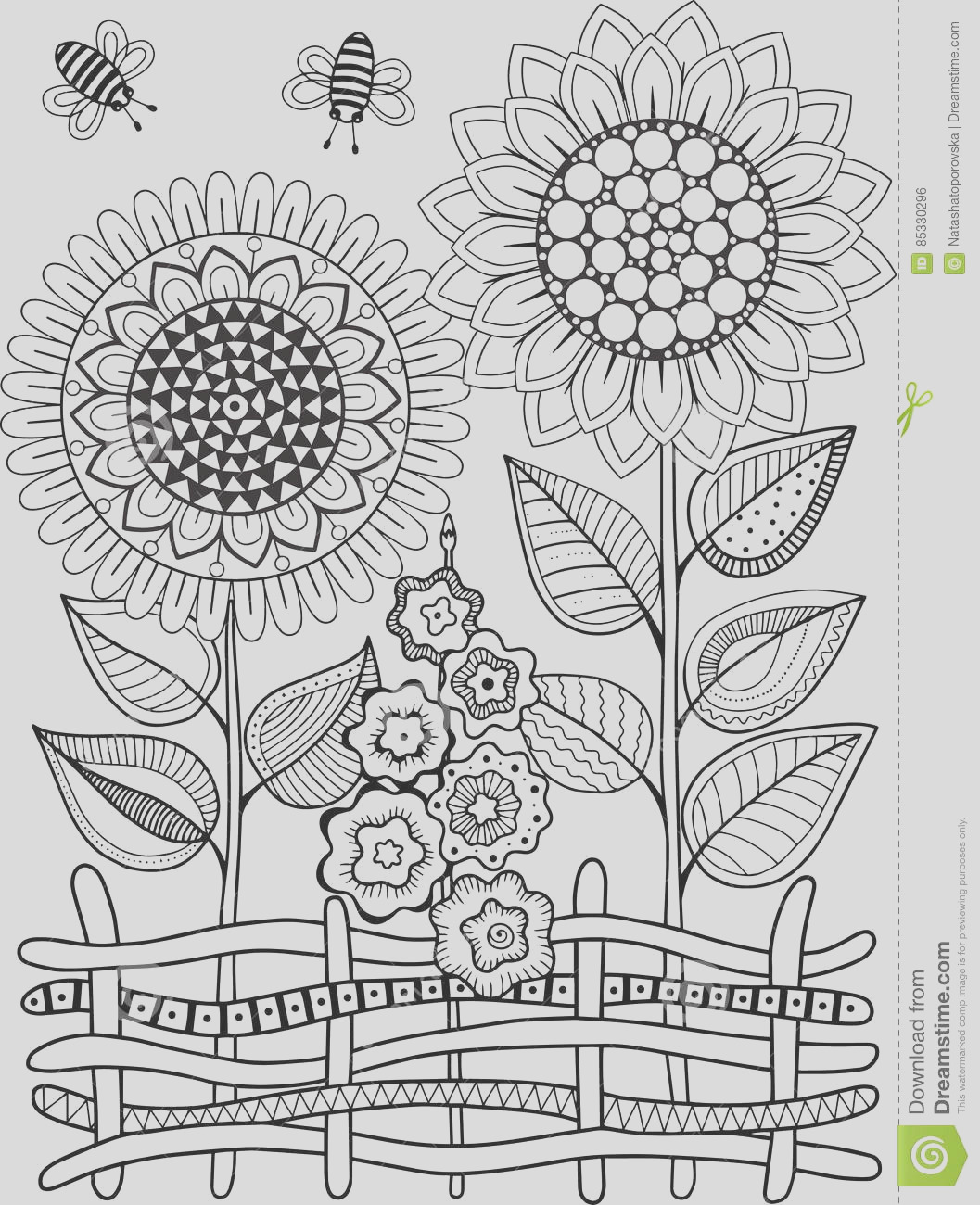stock illustration black white summer sunflowe isolated white abstract doodle background made flowers butterfly vector coloring page image