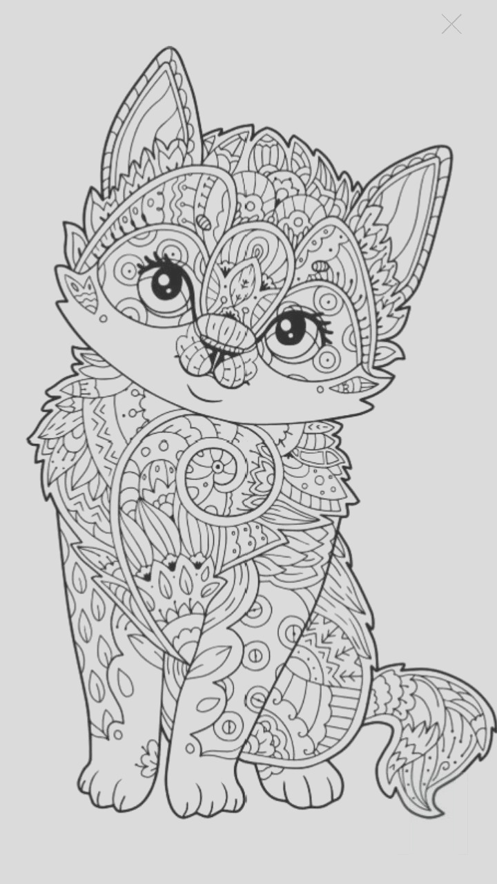 medium animal coloring pages