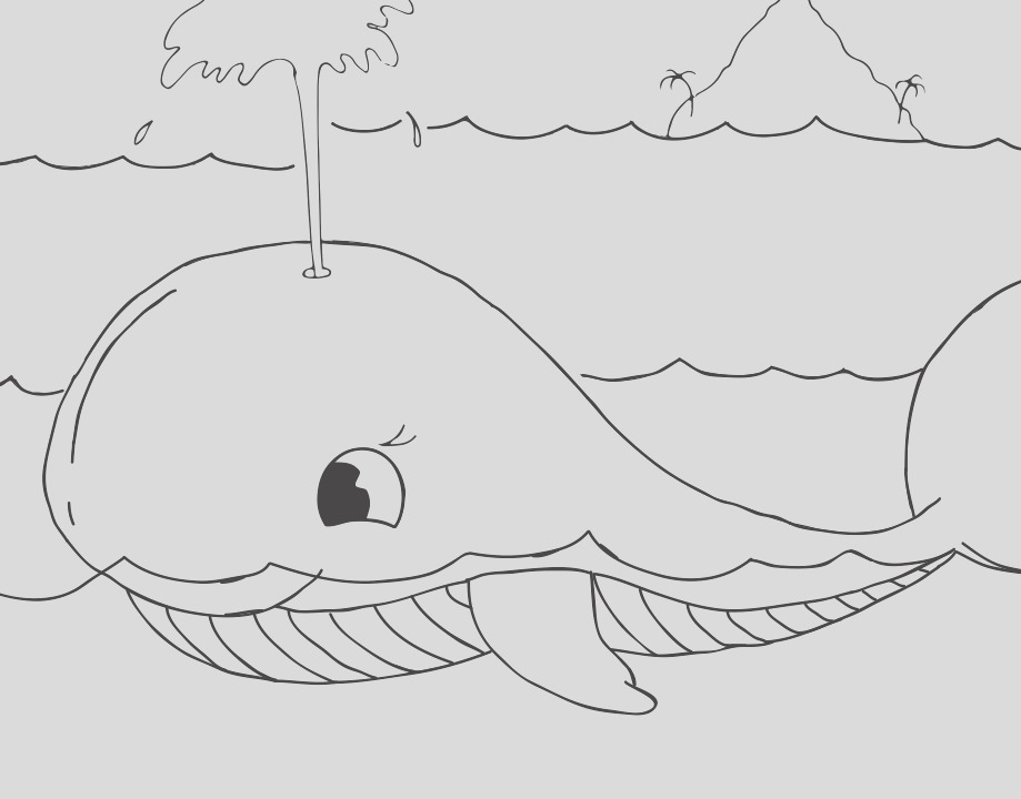 largest living mammal the whale colouring pages