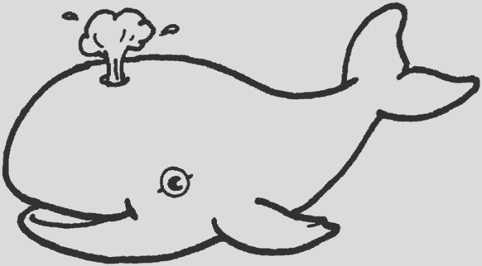 whale coloring pages 1