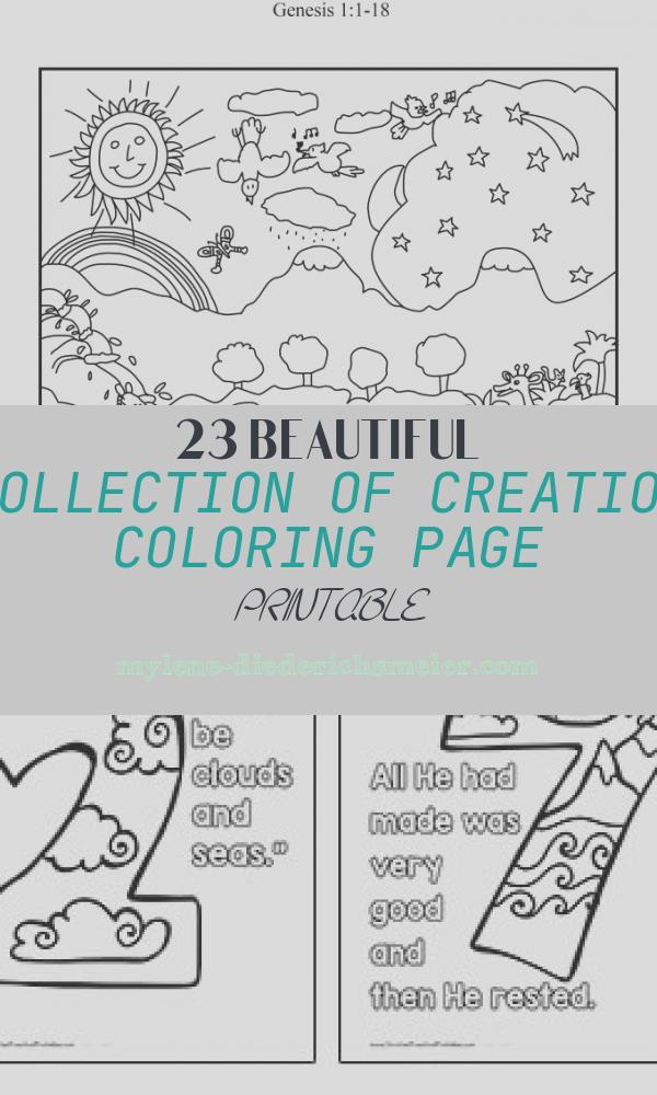 Creation Coloring Page Printable Inspirational Creation Coloring Pages for Preschoolers