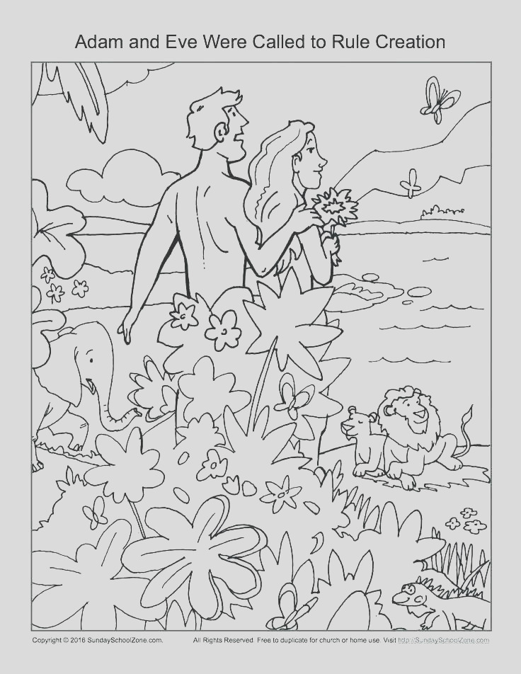 creation coloring pages pdf