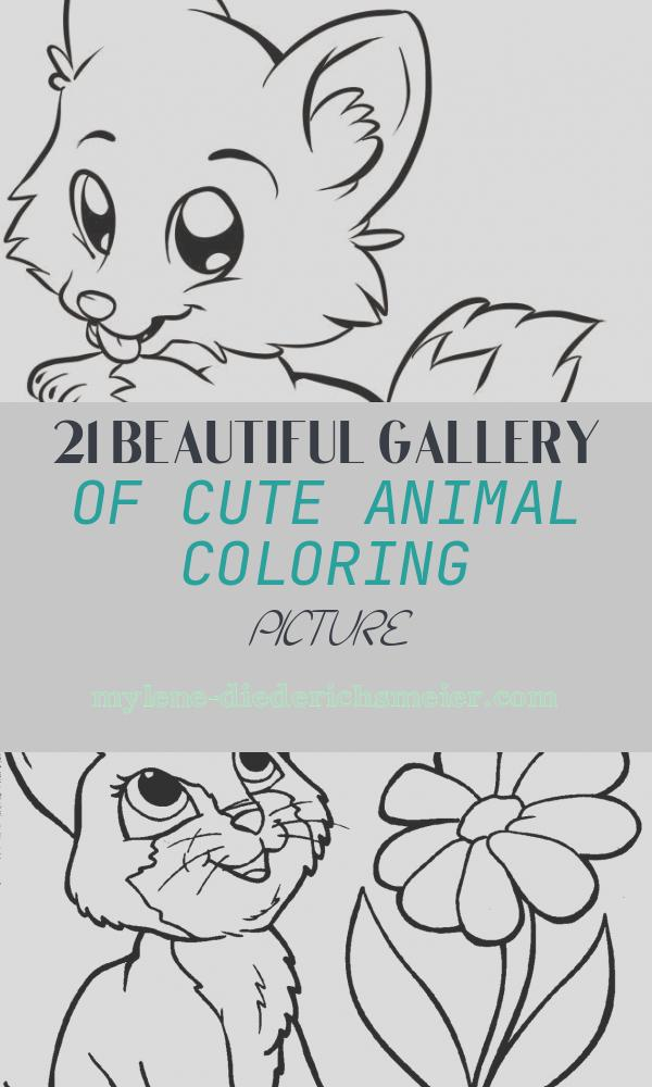 Cute Animal Coloring Picture Awesome Coloring Pages Cute Animals Best Coloring Pages